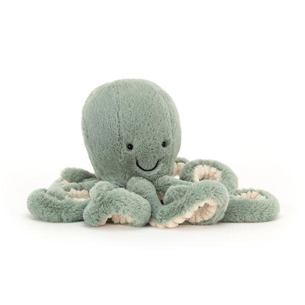 Kleiner Oktupus