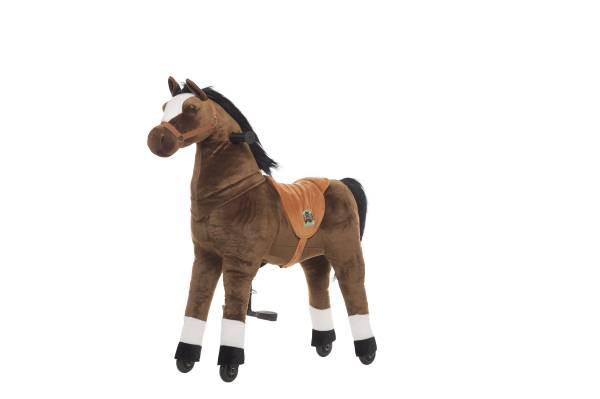 Animal Riding | Pferd Amadeus | Braun