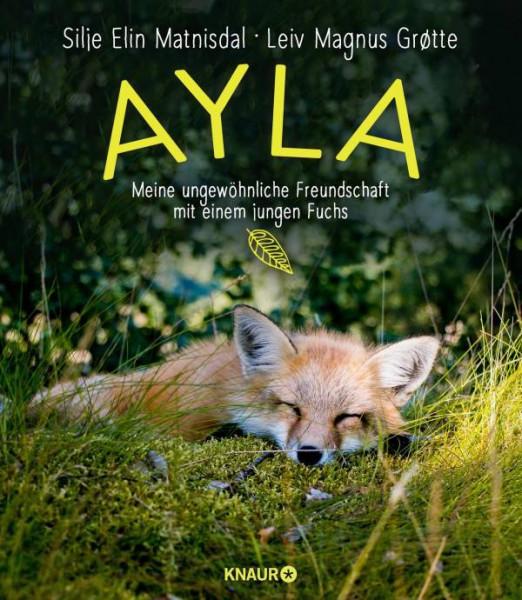 Knaur   Ayla - meine ungewöhnliche Freundschaft mit einem jungen Fuchs