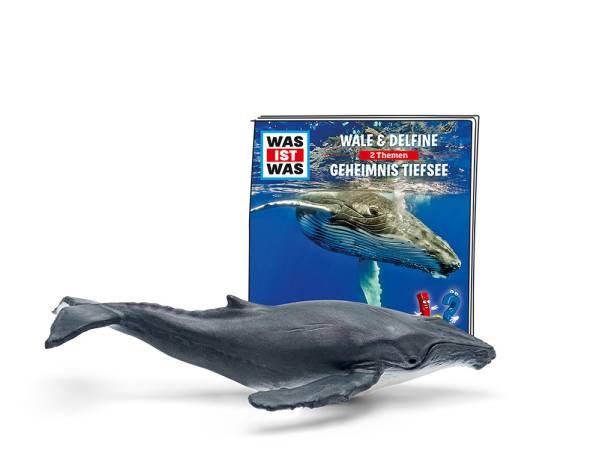 Tonies | WAS IST WAS – Wale & Delfine/Geheimnisse Tiefsee