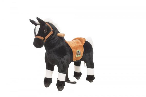 Animal Riding | Pferd Maharadscha | Schwarz
